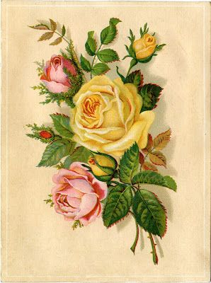 Pink and yellow roses ~ trade card