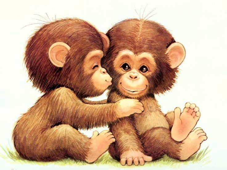 monkey images | Monkey Love | Monkeys