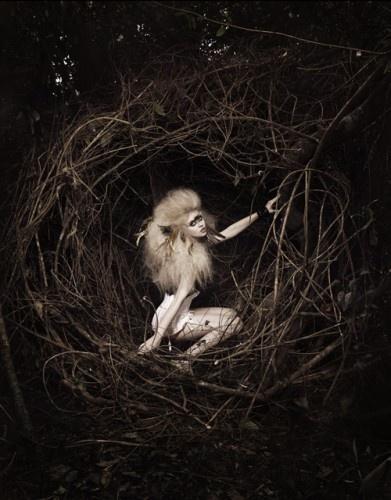 (fairy,faery,fairie,faye,nest,photography,black,&,white)