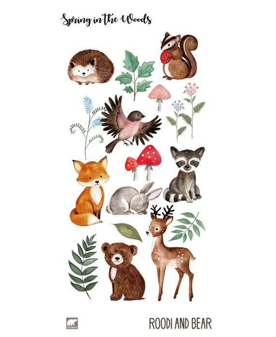 Watercolor Woodland Clipart Watercolour Woodland Clip Art Etsy In 2021 Woodland Clipart Animal Illustration Animal Clipart