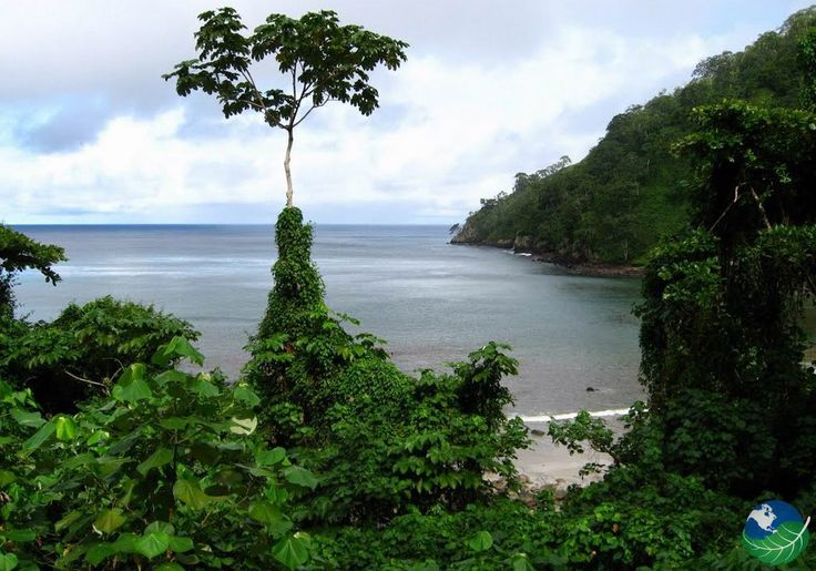 Isla del Coco Costa Rica - A Word Heritage Site