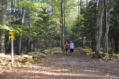 Hiking at the Wasaga Nordic & Trail Centre