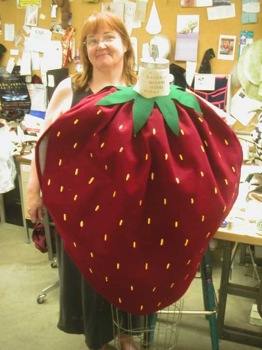 Strawberry costume - nice pattern to follow when making