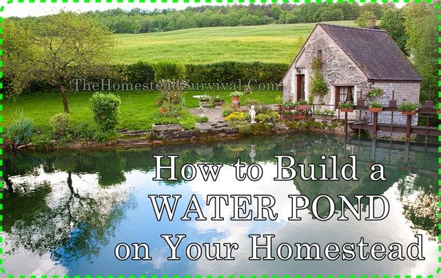 How to Build a WATER POND on Your Homestead Homesteading  - The Homestead Survival .Com