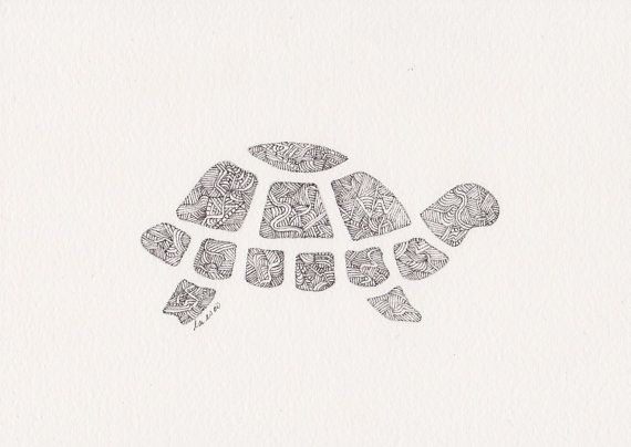 Turtle Line Drawing Tattoo : Original pen and ink illustration box turtle by