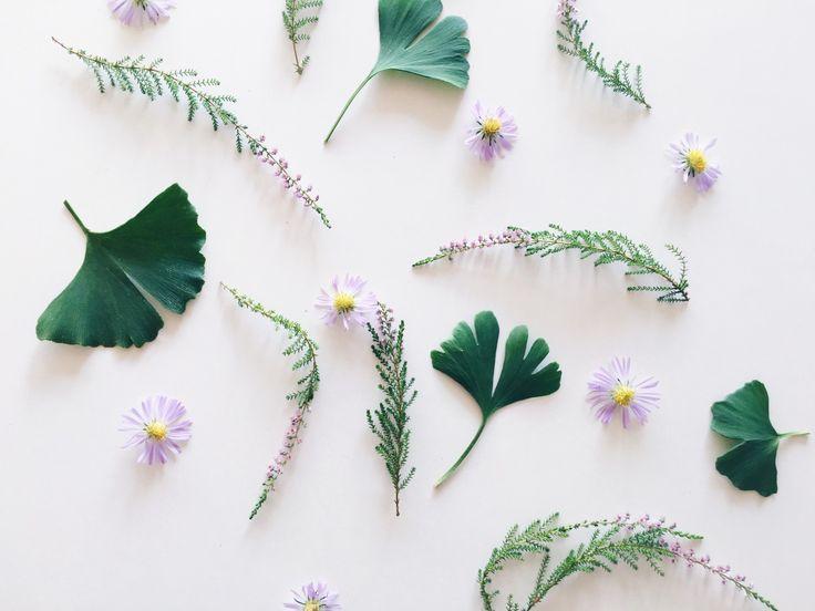 planter flatlay - DIY skab smukke mønstre med planter og blade