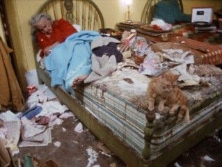 Gray Gardens | Grey Gardens is a home to cats, people, and no shortage of junk.