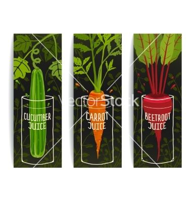 Dieting carrot cucumber beet juices hand drawn vector  by Popmarleo on VectorStock®