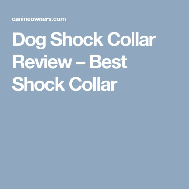 Dog training collars electric dog collar and shock collars for dogs