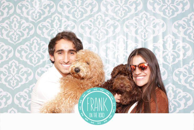 Photobooth de los Australian Labradoodle del Criadero Frank on the Road con La Caravana Photobooth #australianlabradoodle #perros #bogotá #photobooth #dogfriendly