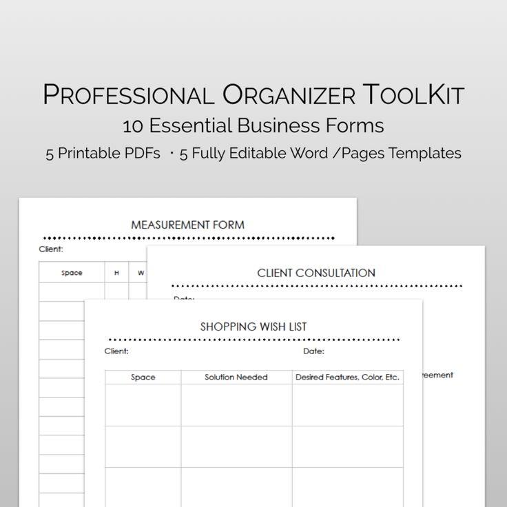 Professional organizer business plan samples marathi essays for students