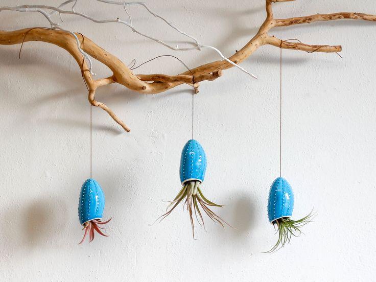 Keramische hängen Pflanzer in Form von Squid / Luft-Pflanzer / Sukkulenten Pflanzer / Blume Topf / weiße Wand-Pflanzer / Seeigel / Weihnachtsgeschenk von OlisCupboard auf Etsy https://www.etsy.com/de/listing/192196423/keramische-hangen-pflanzer-in-form-von