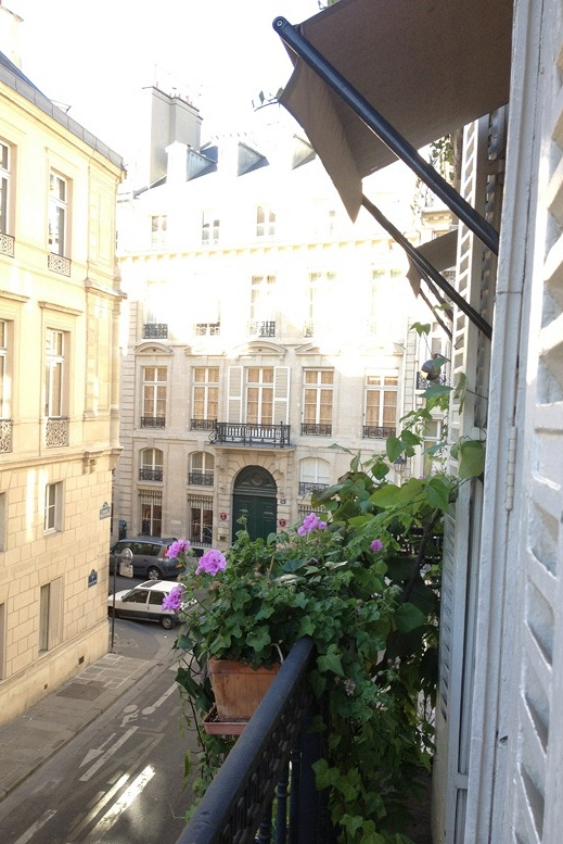 Wednesday Wandering in Paris-A view from the hotel   xo--FleaingFrance: Balconies View, Visit France Paris, Things French, French Styles, Anges, Paris A View, Things France, Hotels Xo Fleaingfr, Styles Decoration