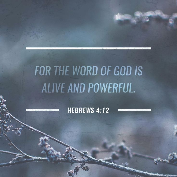 Sword In The Bible Quote: 1000+ Images About Daily Verse Inspiration On Pinterest