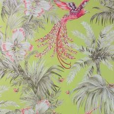 Papier peint - Matthew Williamson - Bird of Paradise - Lime