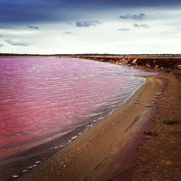 Pink Lake, Western Australia, Australia