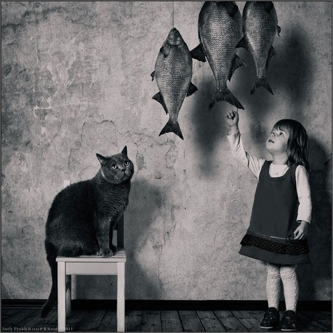 by Andy Prokh: Big Cat, Little Girls, Friends, Girls Generation, Art, Fat Cat, Andy Prokh, Funny Girls, Photo