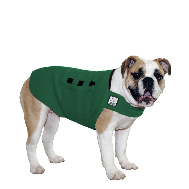 Green English Bulldog Dog Tummy Warmer, great for warmth, anxiety and laying with our dog rain coat. High performance material. Made in the USA.