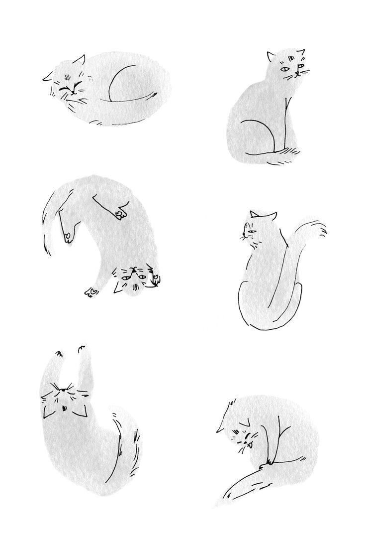 고양이 패턴/느낌이 좋군!  http://www.flickr.com/photos/estherlara/8555206744/in/photostream/