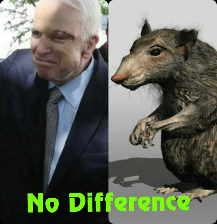 A rat is always a rat