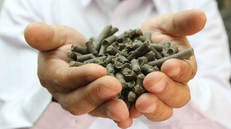 The treasured end-product from the toilet: Recycllose pellets which can be upcycled into highways and paper products.
