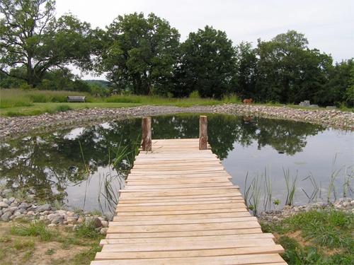 17 best images about pond for us on pinterest pond for Design of ash pond