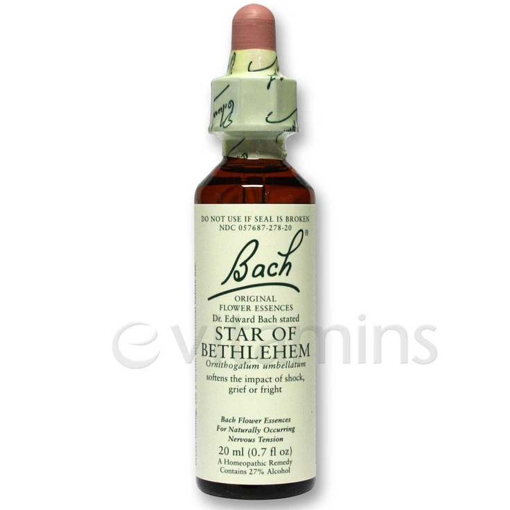 for grief....Star of Bethlehem Bach Flower Essence ~ praying for my husband to want to try this for PTSD healing