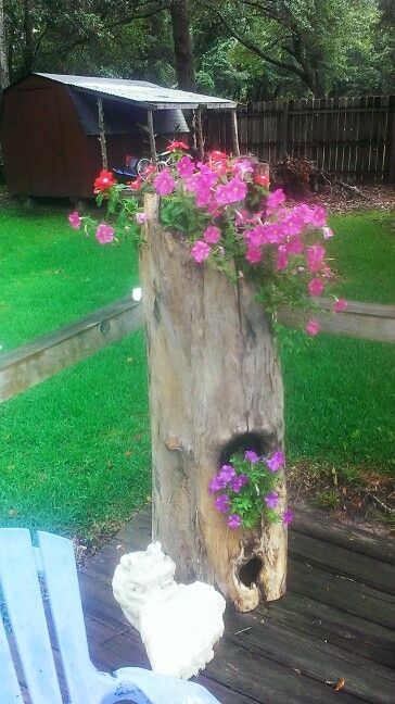 Flower pot holder made out of a old tree stump.