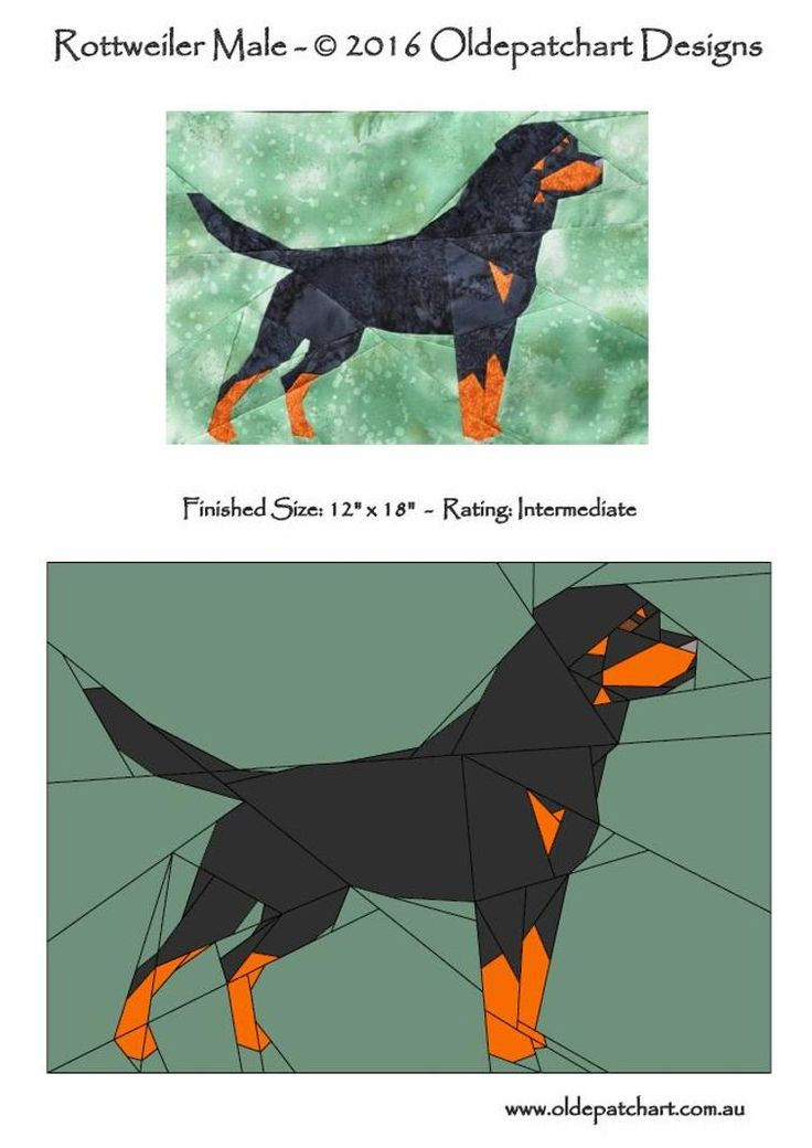 Rottweiler Male | Craftsy