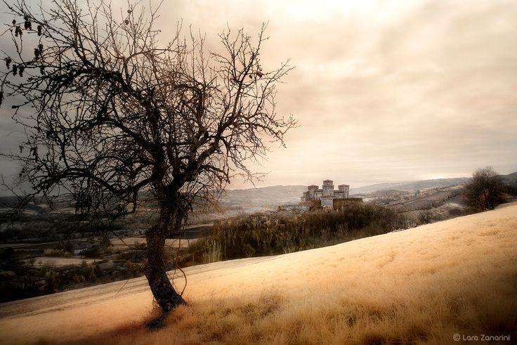 Castello di Torrechiara... - null