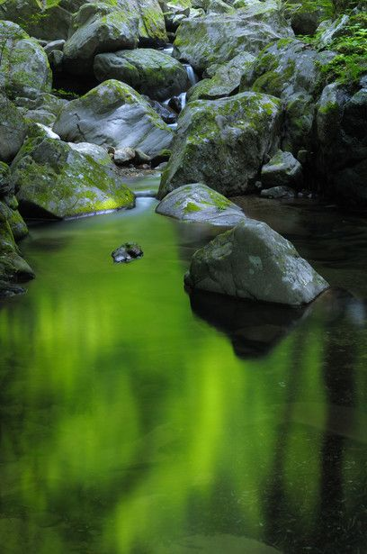 Akame 48 Waterfalls, Mie, Japan #緑 #Green