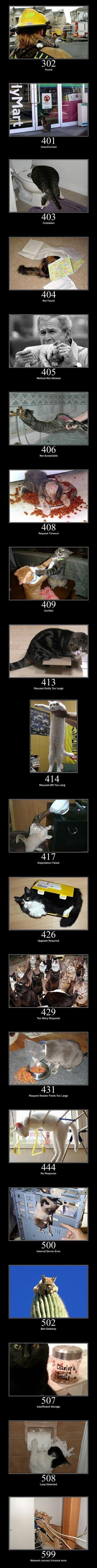 20 Cats As Error Messages.  Basically, how cats take over the internet… which was inevitable, I suppose.