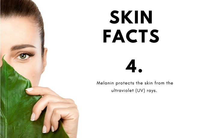 Amazing Facts About Your Skin