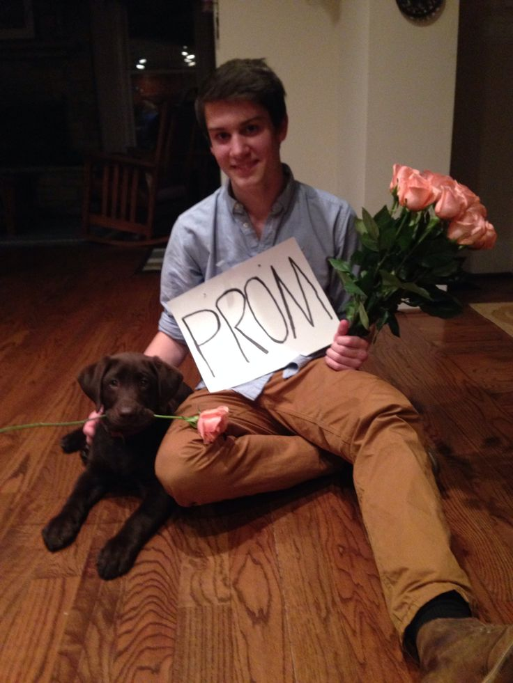 oh my Lord if someone asked me to the prom like this i would most definitely go with him to the prom and then marry him!!!!!!!!!