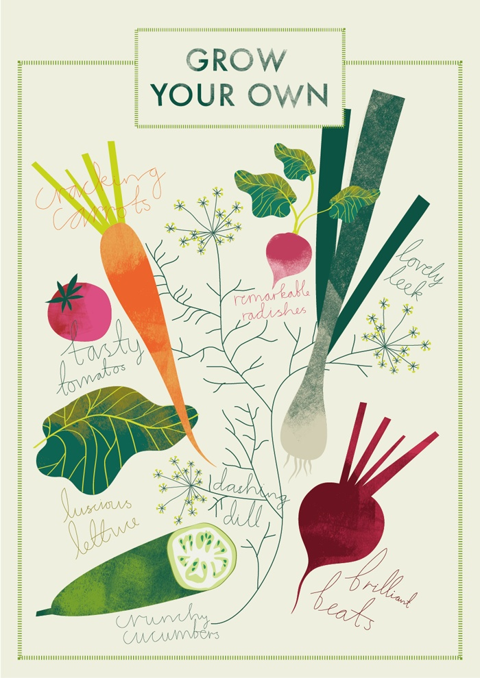 228 best fruit and vegetables illustrations images on for Grow your own vegetables
