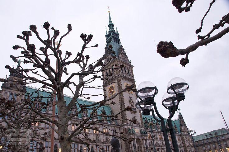 Hamburg Rathaus photo   23 Photos Of Hamburg