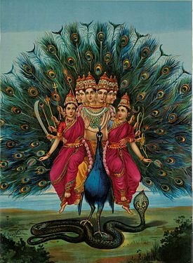 Murugan, also known as Kartikeya, is the Hindu war god, worshiped particularly by Tamil Hindus. Murugan has a peacock as a mount and is often depicted with six heads and twelve arms holding a variety of weapons. His consorts, pictured here, are Valli and Deivayanai.