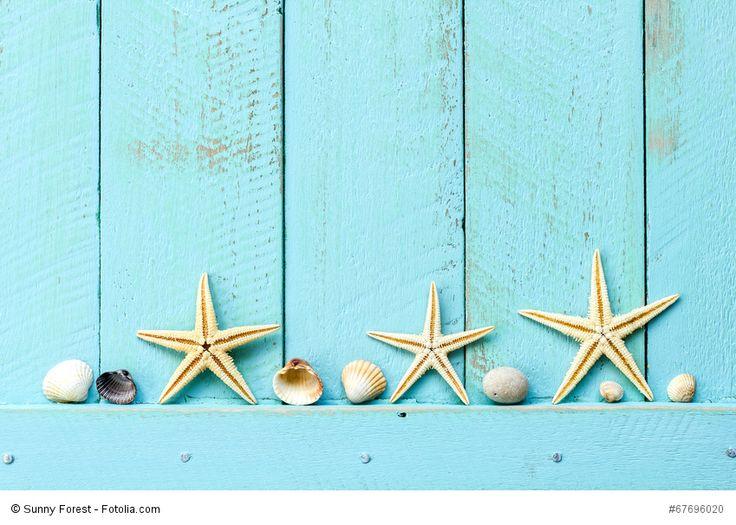 59 best Fotolia Bilder bei uns bestellen images on Pinterest - küchenbilder auf leinwand