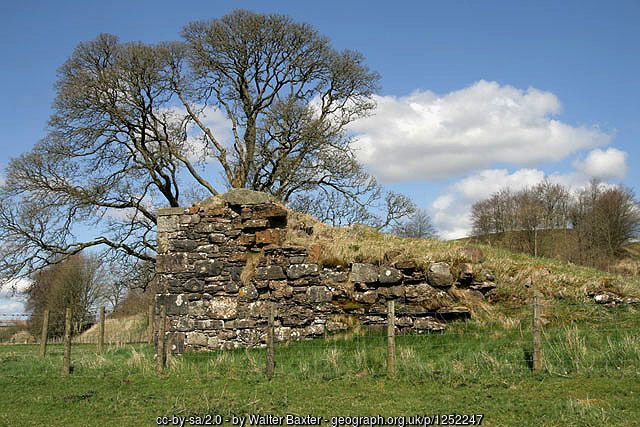 """""""At the height of their power, the Armstrongs probably succeeded in plundering the English countryside more effectively than any other clan. 'They lie still never a night,' sighed one of the Wardens of the West March..."""" Quote from: """"The Border Reivers"""" by Godfrey Watson, p117.: pin - The remains of Mangerton Tower (C) Walter Baxter :: Geograph Britain and Ireland"""