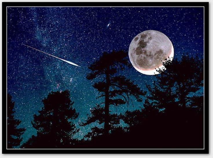 Moon light. 233 best moonlight images on Pinterest   Beautiful  Beautiful