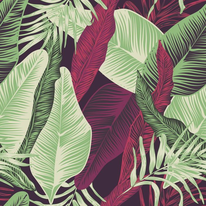 Просмотреть иллюстрацию purple tropics из сообщества русскоязычных художников автора Anna  в стилях: 2D, Графика, Декоративный, нарисованная техниками: Векторная графика, Графика, Компьютерная графика.
