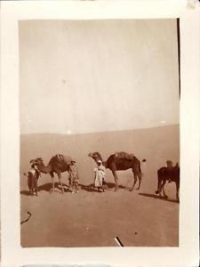 snapshot 11 mai 1930 dans les dunes de Touggourt Algérie Méharée dromadaires