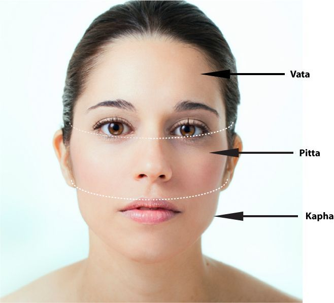 Ayurveda Dosha Face Map Acne Breakout In The Above