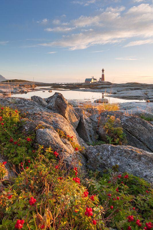 Landscape, NORWAY, TROMS