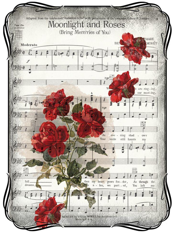 rosas sobre partitura.-
