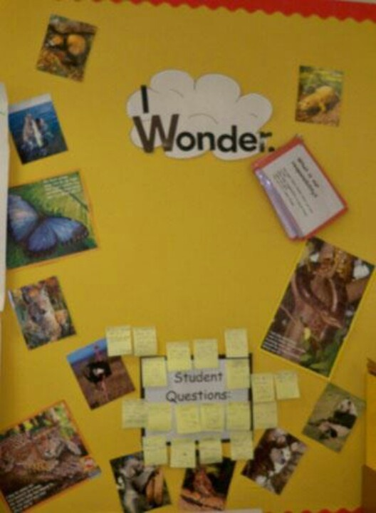 Kinder Garden: Great For All Classrooms- Like A Science Working Wall