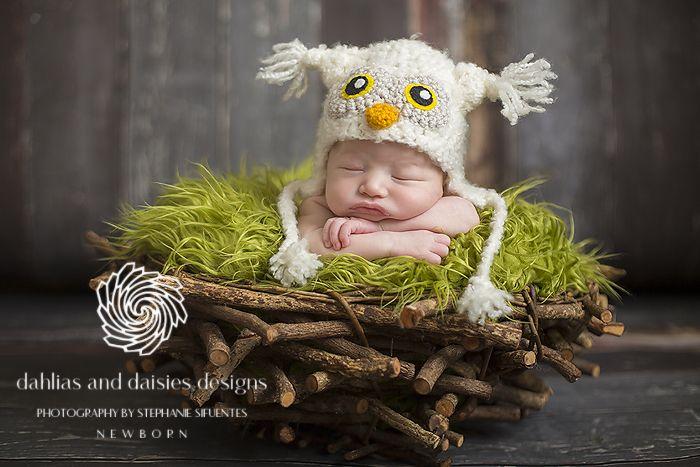 Plano Newborn Photographer Dahlias sand Daisies Designs
