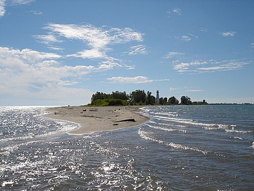 The tip of Long Point, a 42km long sand spit in Lake Erie. http://www.norfolktourism.ca