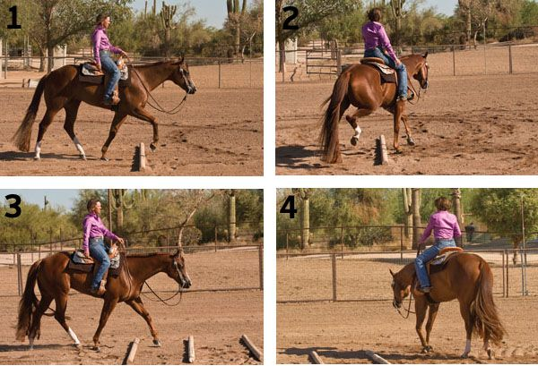 Learn This Four-Pole Exercise. Use just four 12-foot poles to lengthen your horse's stride, improved his focus, and guide, and hone your control. - See more at: http://horseandrider.com/article/fourpole-training-15871#sthash.0sfPh3Is.dpuf