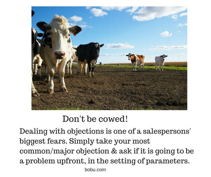 Salespeople don't be cowed! Dealing with objections is one of a salesperson's biggest fears. Simply take your most common/major objection and ask if it is going to be a problem upfront, in the setting of parameters.
